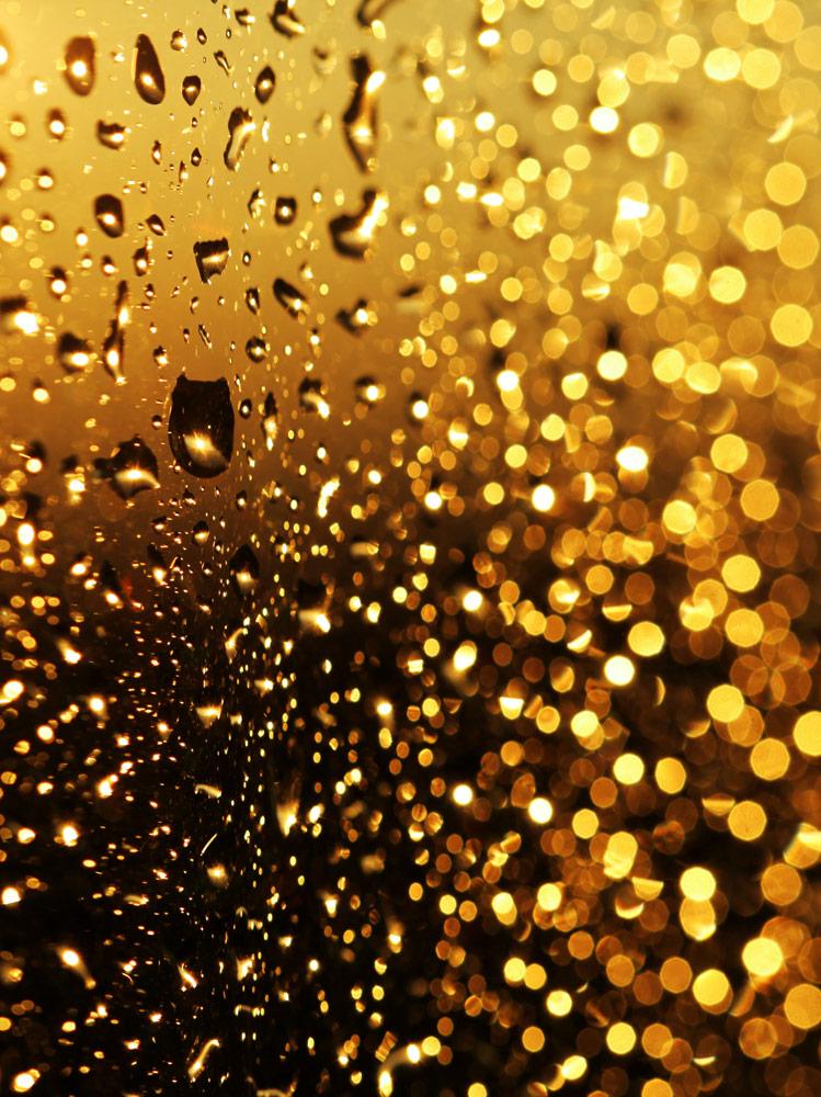 Moodbild Goldene Lichtreflexe Anti Anti